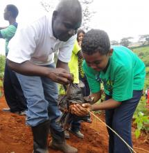 GBM's Duncan Okoth plants a with a student from Nairobi Academy.