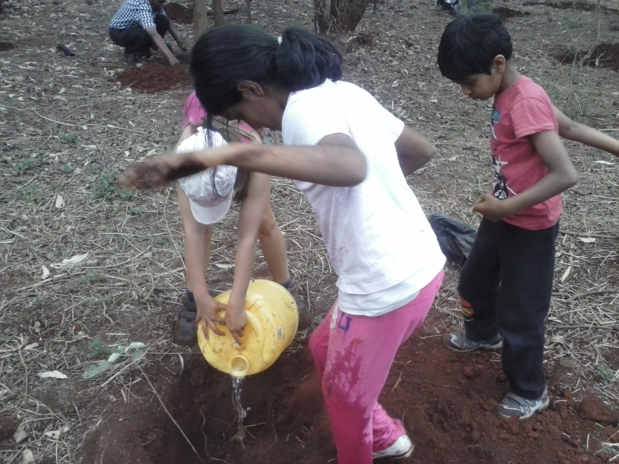 Pupils watering the tree holes before planting
