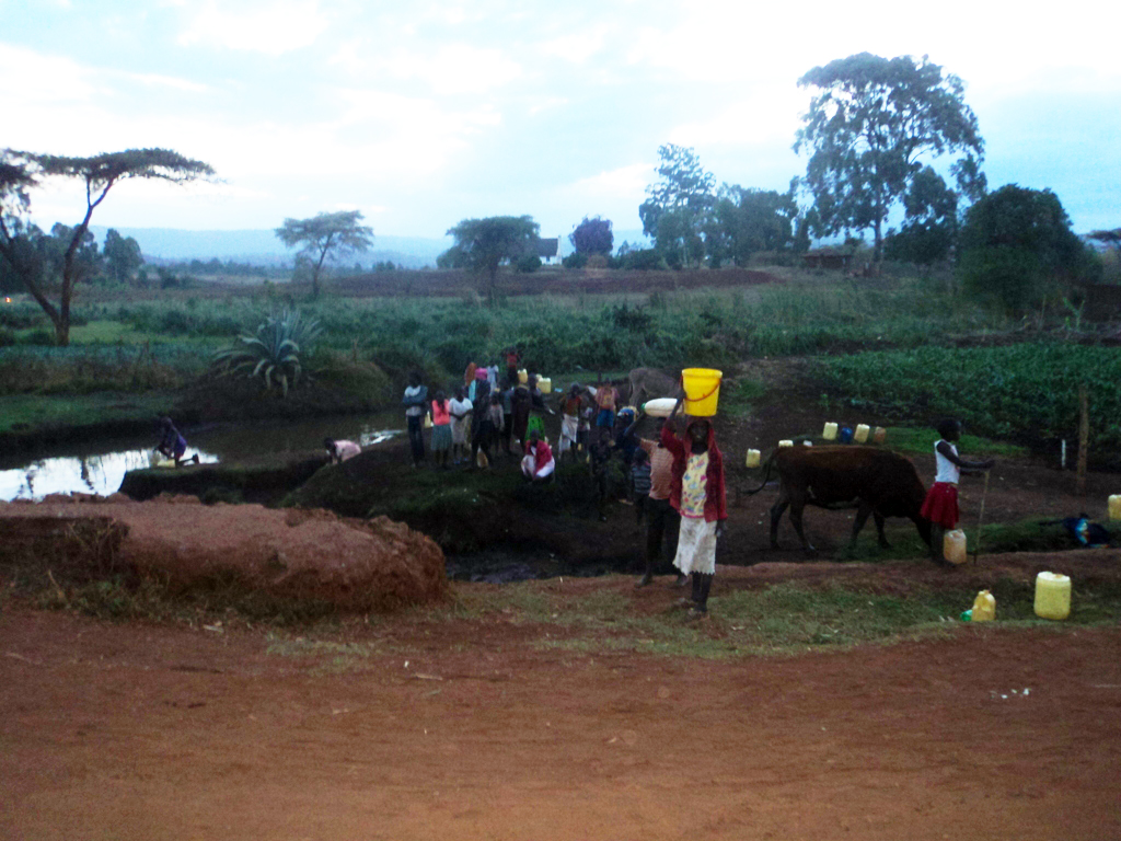 Women, children and livestock scramble for water in Molem, Endebess, Trans Nzoia County