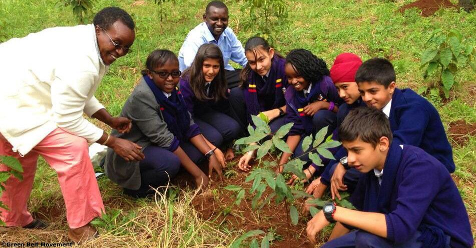 Lets do more for the environment, one tree at a time