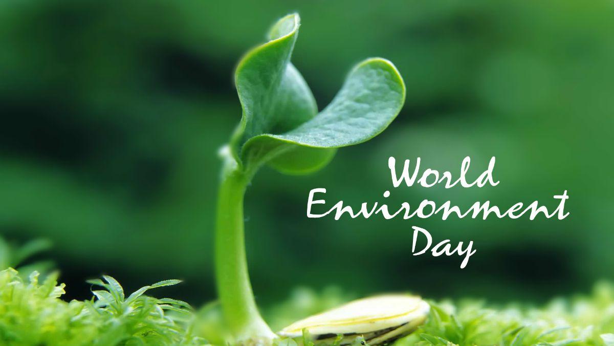 Svjetski dan zaštite okoliša 05. lipnja 2021.