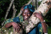 Wangari Maathai (1940-2011)
