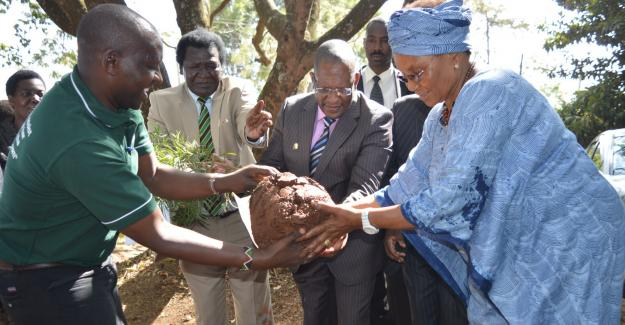 The CS stated that his visit to GBM is not only paying homage to Professor Wangari Maathai, but also extending a hand of collaboration