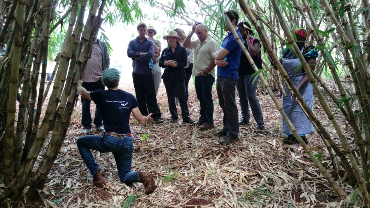 The Nature Conservancy visits the Green Belt Movement's Bamboo